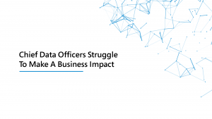 Chief Data Officers Struggle[1]